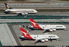 2 Qantas Airbus and a Singapore Airlines Qantas A380, Airbus A380, Airplane Car, Airplane Design, Australian Airlines, Domestic Airlines, Best Airlines, Air Space, Civil Aviation