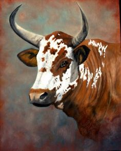 Gado Vaca boi - Nguni cattle in oils Bull Painting, Longhorn Cattle, Cow Pictures, South African Art, Cow Art, Western Art, Animal Paintings, Livestock, Farm Animals