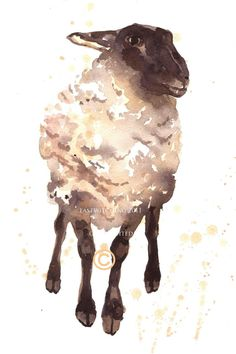Learn all about the Chinese Zodiac Sign of The Sheep @ http://www.buildingbeautifulsouls.com/zodiac-signs/chinese-zodiac-signs-meanings/chinese-zodiac-chinese-sheep/