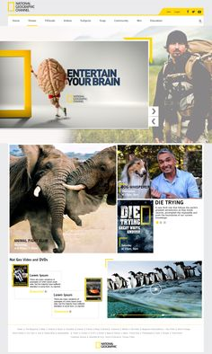 I try Re Design National geographic weblayout one time click on images