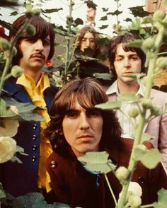 """The Beatles are a famous English band that originated in Liverpool, England. They became """"The Beatles"""" in 1960 and consisted of four very talented and incredibly influential musicians; John Lennon, Paul McCartney, George Harrison, and Ringo Starr. Foto Beatles, Beatles Love, Les Beatles, Beatles Photos, Beatles Poster, Beatles Guitar, Beatles Band, George Harrison, Rock Music"""