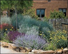 Drought tolerant plant material, stone border and cedar staves :)
