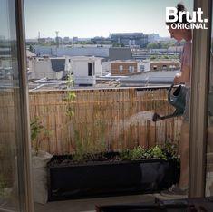 Manger ses propres fruits et légumes quand on n'a pas de jardin, c'est possible.  Voici 5 conseils pour aménager un potager urbain sur son balcon. #jardinage Science And Technology, Sweet Home, Nature, Voici, New York, Crochet, Gardens, Potager Garden, Patio