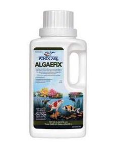 Clever Api Pond Algaefix 32 Oz To Prevent And Cure Diseases Pet Supplies