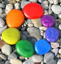 Colors of the Rainbow God always with Rainbow Nature God.  ❤