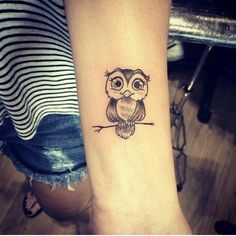 Cute little owl! More