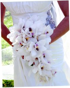 Cascading bridal bouquet of all white cymbidium orchids. Beautiful for a South Florida Beach Wedding