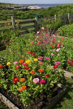 53 beautiful flower garden design ideas how to start a cutting garden Garden Cottage, Diy Garden, Dream Garden, Garden Beds, Garden Landscaping, Spring Garden, Garden Projects, Seaside Garden, Landscaping Ideas