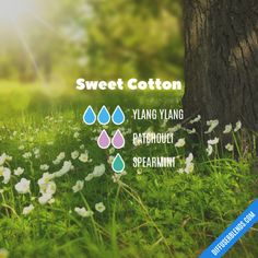 Sweet Cotton - Essential Oil Diffuser Blend