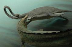 mosasaurus, kronosaurus dioramas - Buscar con Google