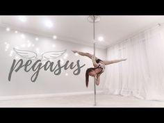 Pegasus | Pole Diaries - YouTube