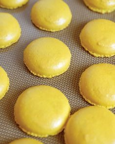 """Colorful Cookies - From Dainty Delicacy to Wedding Must-Have: Tracing the Evolution of French Macarons - In 2011, Martha featured step-by-step techniques for dying macaron batter: """"To make more than one color, divide the egg white mixture into separate bowls, tint as desired, and then fold into the almond-flour mixture."""""""