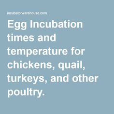 Egg Incubation times and temperature for chickens, quail, turkeys, and other poultry.