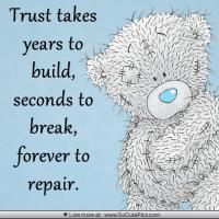 Trust takes years to build, seconds to break, forever to repair. Teddy Bear Quotes, Teddy Bear Images, Teddy Bear Pictures, Bear Pics, Hug Quotes, Blue Nose Friends, Card Sentiments, Tatty Teddy, Cute Teddy Bears