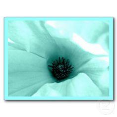 Postcard-Flowers-Painted Flowers 9