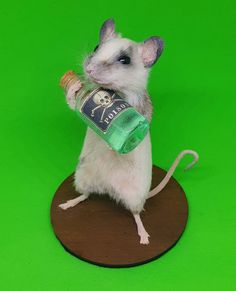 Taxidermy Mouse with Poison Bottle Taxidermy, Trending Outfits, Bottle, Handmade Gifts, Animals, Etsy, Kid Craft Gifts, Animales, Animaux