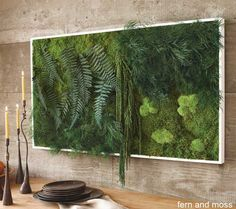 The ferns and thick blankets of moss rise up in three dimensions from their surrounding frame, this eco-preserved art requires no watering.
