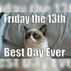 Grumpy Cat Friday the 13th grumpy cat instagram instagram quotes friday the 13th friday the 13th quotes happy friday the 13th friday the 13th quote
