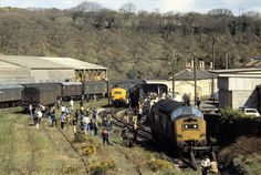 37177 and 37353 at Milford Haven Milford Haven, Transportation, Scene, Train, Strollers, Stage