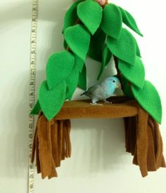 "Parrotlet, parrots ""tree house"" available on www.facebook.com/Parrot.Littles"