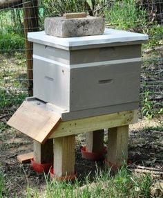 Pictures and description of the first inspection of honeybee hives after hiving the bees one week earlier.