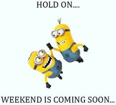 Top 30 Humor Minions Quotes - Quotes and Humor Despicable Me Funny, Cute Minions, Funny Quotes, Funny Memes, Hilarious, Humor Quotes, Funny Cartoons, Funny Minion Pictures, Funny Pics