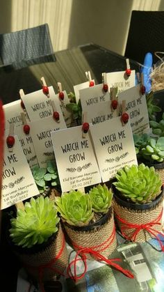"""Watch Me Grow"" printable baby shower favor tags - perfect for succulent baby shower favors"