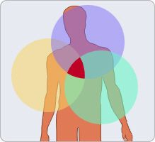 According to #anthroposophy, the human being consists of four elements, or bodies, both different and interrelated: the physical #body, etheric body (life forces), the astral body (emotions and sensations), and the self or ego body that corresponds to consciousness, the power to direct, lead and shape. Diseases would result from imbalances between the four components of the human being.