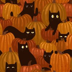 Pumpkin in the Cat Patch ~ background for Halloween | by Lindsay Nohl of Paper Bicycle