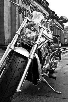 7 Stunning Ideas: Harley Davidson Wedding Bridal harley davidson v rod logo.Harley Davidson Wallpaper V Rod harley davidson crafts diy.Harley Davidson Forty Eight Seat. Motos Harley Davidson, Vintage Harley Davidson, Harley Davison, Honda, Ride Or Die, My Ride, Gp Moto, Sportster 883, V Max