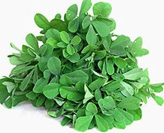 What is fenugreek? Cooking with fenugreek seeds and leaves, preparation and storage. Fenugreek recipes. Health benefits of fenugreek. Growing fenugreek.