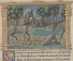 Marco Polo. Auteur du texte Url of the page : http://gallica.bnf.fr/ark:/12148/btv1b55005891m/f67.item