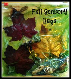 Kick off Fall by making some fun Fall Sensory Bags. Fall Preschool Activities, Sensory Activities, Infant Activities, Toddler Classroom, Toddler Teacher, Classroom Ideas, Kids Clubhouse, Sensory Bags, Sensory Table