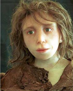 Reconstruction of a Neanderthal child from Gibraltar by the Anthropological Institute, University of Zürich. what were Neanderthals really like and how much did we inherit from them? Eupedia. Sequencing the Neanderthal genome. light eyes, language, burial of the dead.