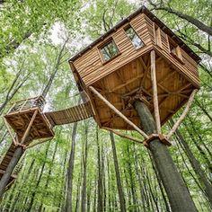 Baumhaus Nest (Diy House Tree)