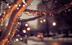 christmas lights tumblr - Szukaj w Google