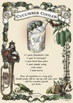 The Hendrick's Cucumber Cooler - my signature drink -- minus the mint