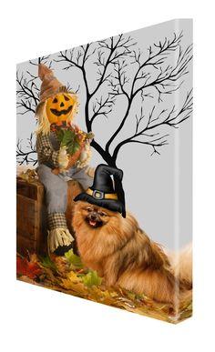 Amazon.com: Pomeranian Dog Halloween Canvas 16 x 20 $69.99