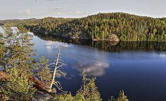 Ensin löi läpi Lapland, seuraavana vuorossa on Lakeland - Järvi-Suomesta kehitetään kansainvälistä brändiä