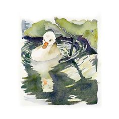 """Spring Baby"" No. 2 7 x 8 Watercolor Painting Original ...$69.00 Swan Art Original Watercolor Painting by LaBerge, $69.00Easter Anima"