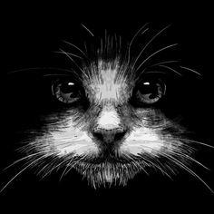 Cat T Shirt By Artofkaan Design By Humans