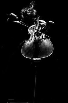 The musician - photography of music