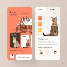 Adopt a cat - Singapura Cat - ideas of Singapura Cat - Adopt a cat by Black Lead The post Adopt a cat appeared first on Cat Gig. Web Design, Design Logo, App Ui Design, Mobile App Design, Interface Design, Design Agency, Flat Design, Layout Design, Lightroom