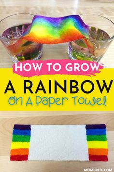 Grow a Rainbow on Paper Towel Experiment | Mombrite