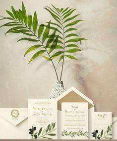 Oliwa — Oak & Orchid
