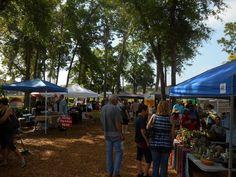 Saturday is market day at Lake Mary Farmers Market in Florida 9:30am - 1:30pm http://www.farmersmarketonline.com/fm/LakeMaryFarmersMarket.html