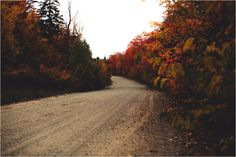 Photo collage ref  Photos feature winding roads, train tracks, and paths leading to unknown places. Fall leaves are prominent. Most of the photos are in black and white, except for a few, which are primarily red.