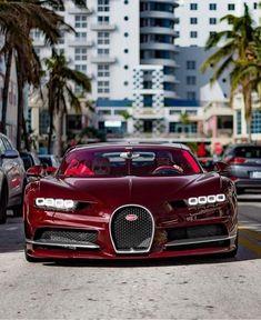 Bugatti Cars, Lexus Cars, Racing Wheel, Race Racing, Car Trash, Ford 4x4, Mode Of Transport, Latest Cars, Car Car