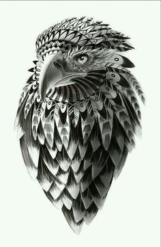Águia tatuagem