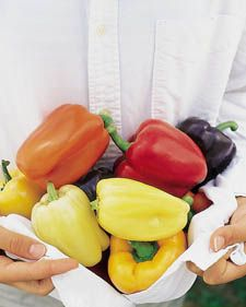 How to grow mixed sweet peppers